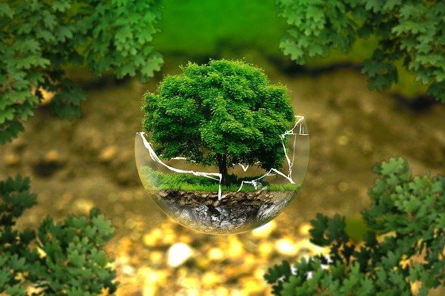 Kann Umwelttechnik den Planeten retten?